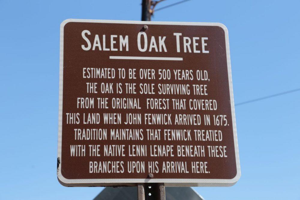 Salem Oak Tree Plaque