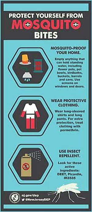 infographic for protecting during Mosquito Season